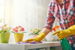 What role may a Cleaner have in your Life