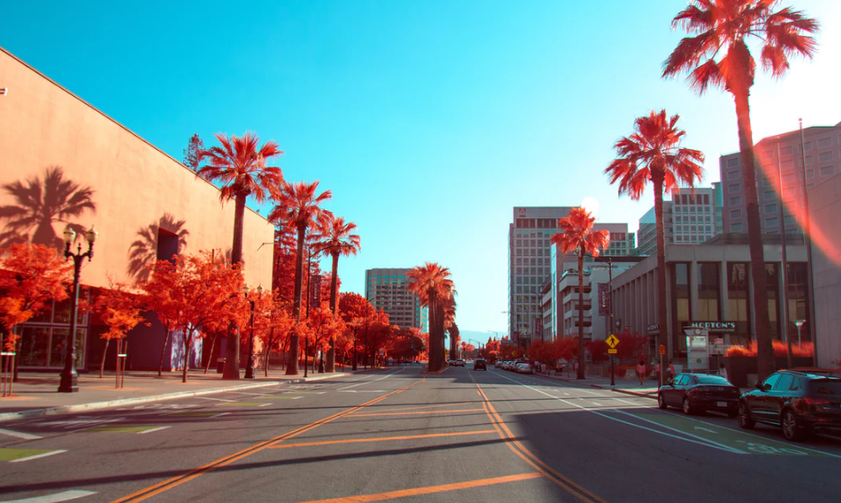 How to get a Business License in California